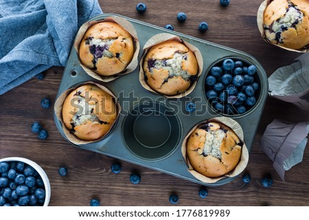 Blueberry muffins in a muffin tin. Baked goods concept. #1776819989