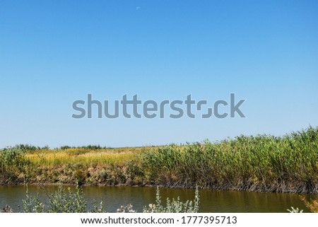 A small water channel with grass growing along its banks. A reservoir along the banks of which grass grows. #1777395713