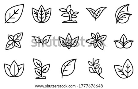 Basil icons set. Outline set of basil vector icons for web design isolated on white background #1777676648