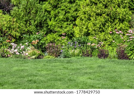 Landscaping of the backyard of a private house. Mowed lawn, decorative trees, flower beds. Royalty-Free Stock Photo #1778429750