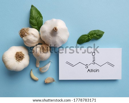Structural chemical formula of allicin molecule with raw garlic. Allicin is an organosulfur compound found in fresh garlic, has antimicrobial activity, reduce blood pressure, may help cut cholesterol. #1778783171