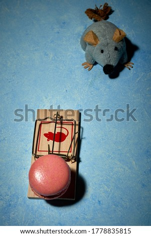 pictures of a sweet French dessert and mouse