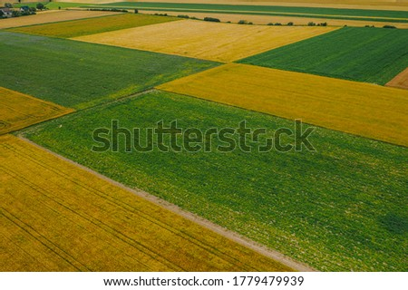 Green and yellow fields and meadows. Panorama aerial shot from a drone