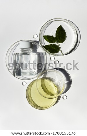 Abstract cosmetic laboratory. Chemical laboratory research. Nature cosmetics. #1780155176