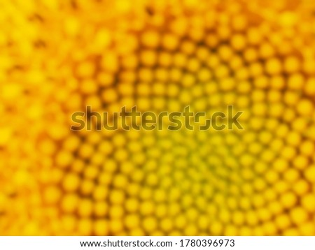 Yellow blurred background from a flower of a sunflower. Bright cheerful wallpaper or backdrop on the theme of summer, heat, flowering. Top view from above
