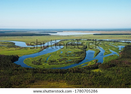 beautiful landscape of northern forests and swamps, shot in summer from a helicopter