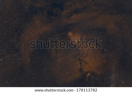 The Christmas Tree Cluster and Cone Nebula in Bi Color Narrow Band #178113782