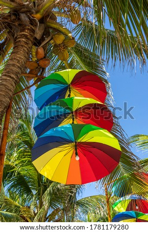 Street lamps decorated with colorful umbrellas hang on a pillar in street against the blue sky and green coconut palm tree on a sunny day, Vietnam #1781179280