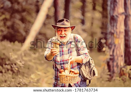 Picking mushrooms. Happy Grandfather with mushrooms in busket hunting mushroom.  #1781763734