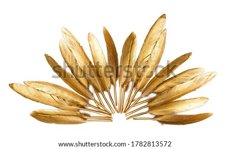 Golden feather on a white background                    Royalty-Free Stock Photo #1782813572