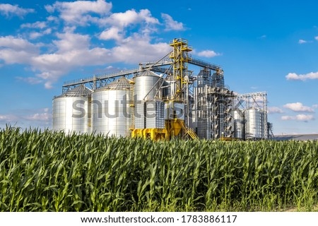 Modern Granary elevator. Silver silos on agro-processing and manufacturing plant for processing drying cleaning and storage of agricultural products, flour, cereals and grain.  #1783886117