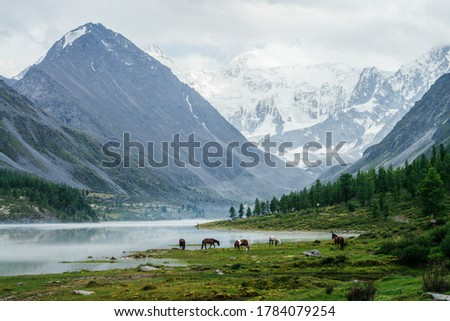 Horses and tourist camp near beautiful mountain lake in mist on background of great glaciers. Awesome alpine view to high snowy mountains and rocks. Atmospheric scenery with highland lake and horses.