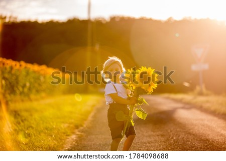 Little toddler boy, child in sunflower field, playing with big flower on sunset #1784098688
