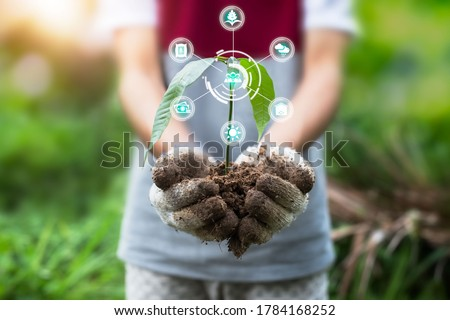 Two hands of the men was carrying of potting seedlings to be planted into the soil. Innovation technology for smart farm system, Agriculture management. Royalty-Free Stock Photo #1784168252