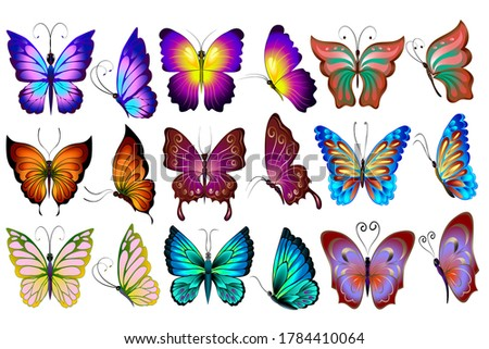 Big set of colored butterflies.Set of colored butterflies on a white background.