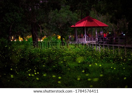 Long exposure shot of Fireflies in the park in night time background is red roof hut and tourists are taking pictures of the atmosphere. This picture took at night time contain noise / gains.