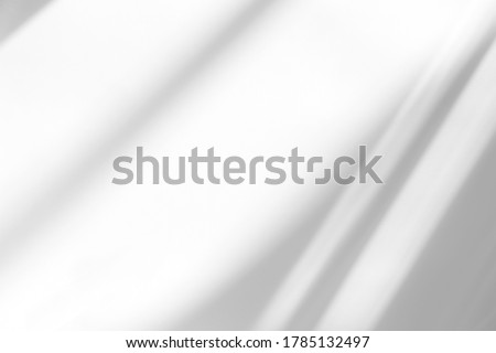 Overlay effect for photo and mockups. Organic drop diagonal shadow and rays of light from window on a white wall. shadows for natural light effects #1785132497
