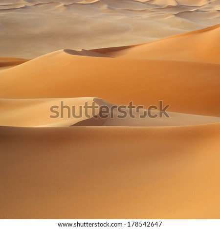 Huge dunes of the desert. Fine place for photographers and travelers. Beautiful structures of sandy barkhans. #178542647