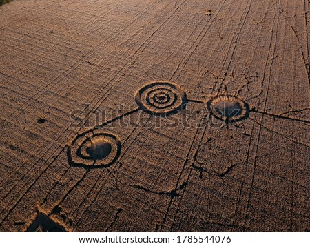 Mysterious crop circle in oat field near the city, aerial view