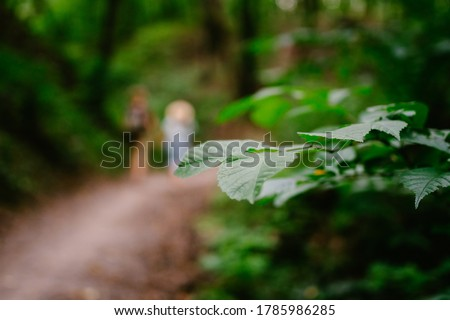 Couple holding hands walking in forest, back view. Adventure, travel, tourism, hike, people. Rear view of two people carrying backpack while walking through wood. Man holds girlfriend by hand on hike. #1785986285
