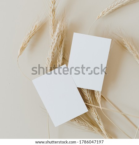 Blank paper business cards with mockup copy space on rye, wheat stalks on beige background. Minimal business template. Flatlay, top view. #1786047197