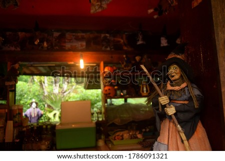 this pic show a witch doll with pumpkin light background, halloween concept and feel warm and dark color
