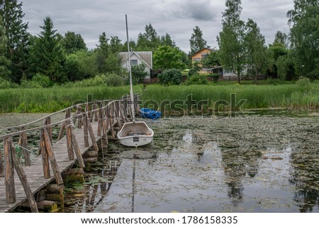 lakeside overgrown with water lilies with houses and a forest on the shore #1786158335