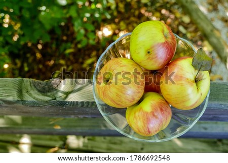 apples in a basket, digital photo picture as a background , taken in bled lake area, slovenia, europe