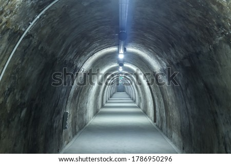 Old concrete tunnel with fluorescent lights. #1786950296