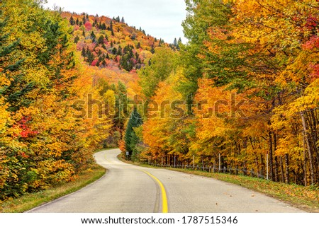 Winding road in the mountains in Autumn