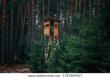 Hunters' booth at the edge of the forest and in the forest                                Royalty-Free Stock Photo #1787864927