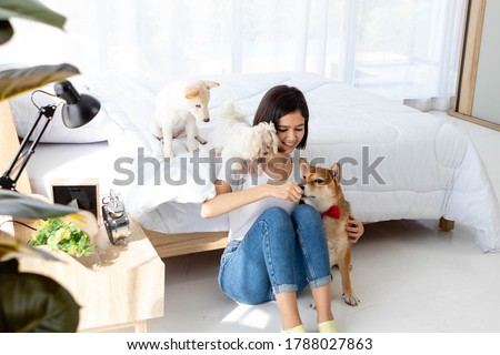Young Asian woman relaxing, holding and giving a treat to Shiba dog, White Shiba puppy and Maltese dog, smile happy against bed in bedroom. Pet therapy at home. Relationship of pet and owner concept. Royalty-Free Stock Photo #1788027863