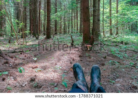 Walk and rest in the forest, picking mushrooms, quiet hunting, feet in rubber boots against the background of a forest landscape with amanita, active summer hobbies #1788371021