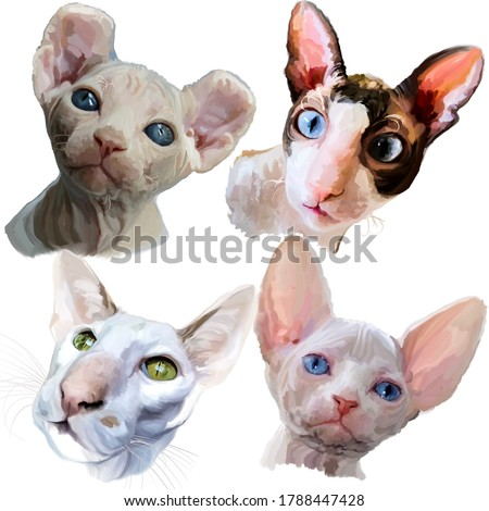 Drawing of four sphinx cats with bright expressive kind smart eyes