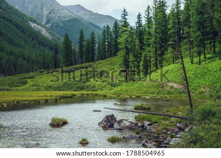 Atmospheric scenery with alpine lake and coniferous forest in mountain valley. Dramatic green landscape with conifer trees on slopes and ripples on water surface. Beautiful wild place in mountains. #1788504965