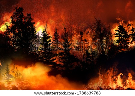 Massive California Apple Fire forcing thousands of people to evacuate their homes, wildfires spreading rapidly, escaping to save their lives, destroyed silhouette, natural calamity #1788639788