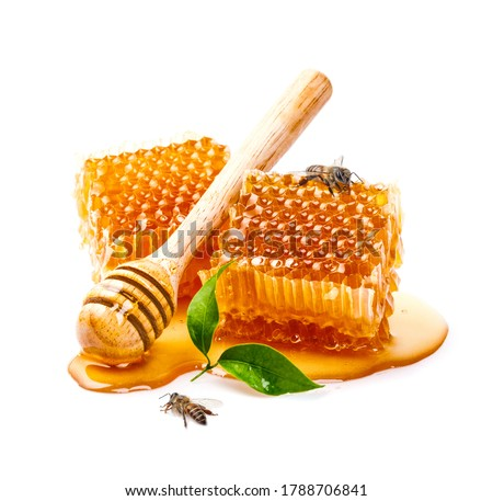 Honeycomb with bee and honey dipper isolate on white banner background, bee products by organic natural ingredients concept Royalty-Free Stock Photo #1788706841