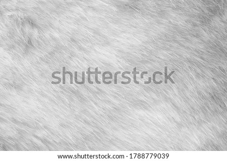 White fur fabric texture background Royalty-Free Stock Photo #1788779039