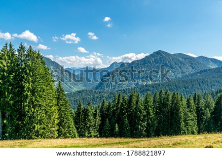 View over valley in the mountains, meadow and conifer forest in the foreground, mountains in the background, blue sky with some clouds Royalty-Free Stock Photo #1788821897