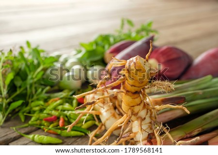 sweet basil, pepper, and galangal main of thai food in gredient on wooden floor at farm. #1789568141