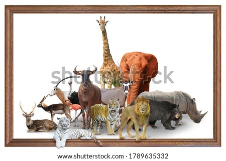 The African wildlife picture has been split up and reunited on a white background in a picture frame. Elephant, Giraffe, Rhino, Lion, Tiger, Deer, Gracia, Antelope, Ostrich, Bear