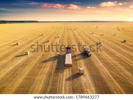 Aerial view of truck with hay bales. Agricultural machinery. Chamfered field and hay stacks after harvesting grain crops at sunset. Top View. Tractor loads bales of hay on truck with trailer. Harvest #1789663277