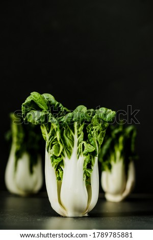 Chinese Baby bok choy with dark background-low key food photography