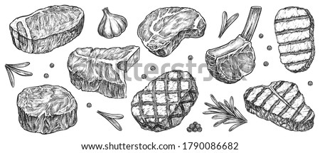 Steak sketch. Hand drawn beef, lamb and pork steak extra or medium rare with garlic, greenery and pepper spice vector collection. Butchery food meat product sketch engraved set isolated on white #1790086682