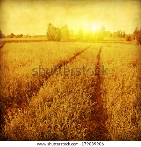 Field of green grass with road in grunge and retro style. #179039906