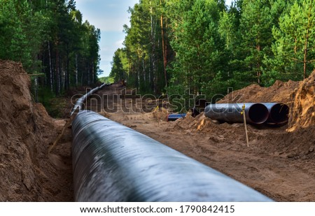 Construction Gas Pipeline Project. Natural Gas and Crude oil  Transmission in pipe to LNG plant (shipped by LPG tanker). Building of transit petrochemical pipe in forest area. Pipes Welding  #1790842415