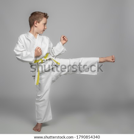 child intent on performing a martial arts kick. studio photos. Royalty-Free Stock Photo #1790854340