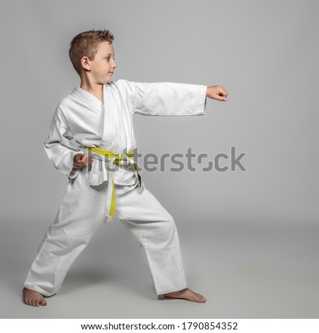 child practicing martial arts intent on performing a kata. youth sport concept. Royalty-Free Stock Photo #1790854352