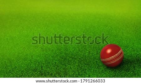 cricket ball resting on green grass pitch, cricket ground, ipl, twenty twenty , cricket world cup Royalty-Free Stock Photo #1791266033