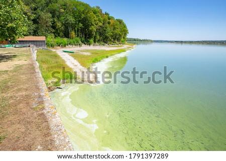 Beautiful lakeside in Park Naturel de Lorraine, Etang de Lindre, France #1791397289